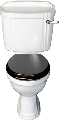 Avondale WC with cistern and fittings