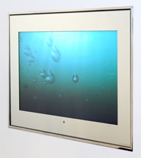 "Aquavision 10.4"" Bathroom TV with remote control.."